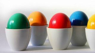 Lo sapevate che esistono uova blu ma anche verdi?