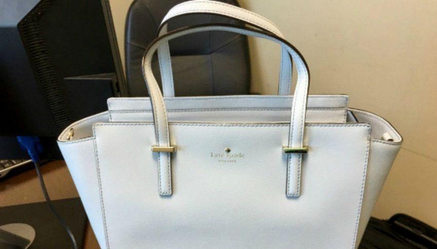Di che colore è questa borsa? La domanda che divide il web