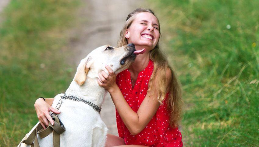 Una leccata del cane sul volto? E' più pericoloso un bacio del partner