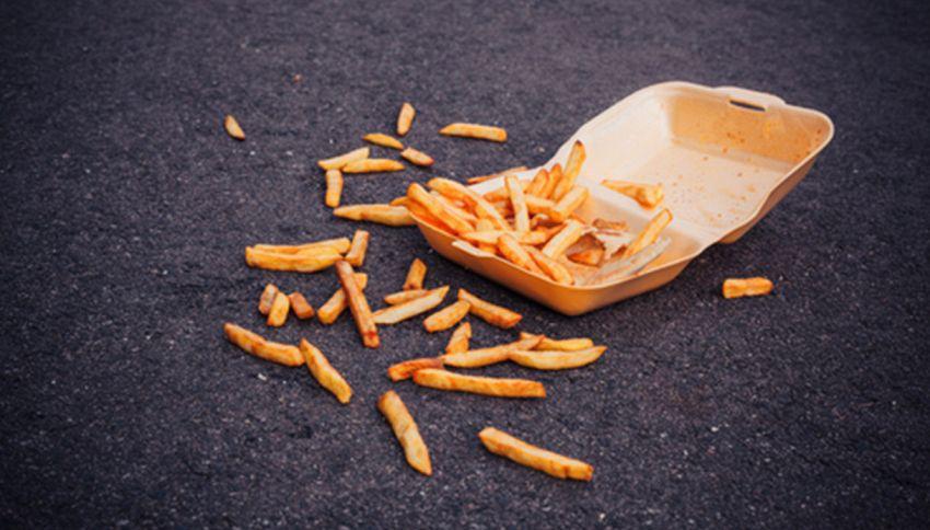 Il cibo che cade per terra non è così sporco come credete. Ecco perché