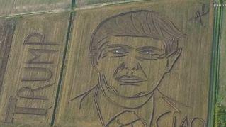 In Veneto il maxi ritratto di Trump su un campo di mais