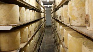 Attenzione: questo è il formaggio più pericoloso del mondo, fatto in Sardegna
