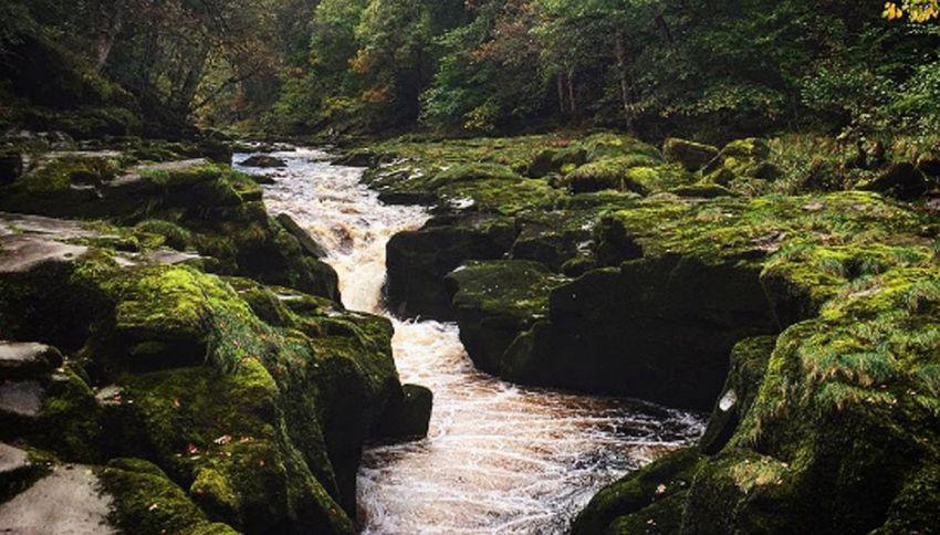 Attenzione a questo fiume: sembra tranquillo ma nessuno ne esce vivo