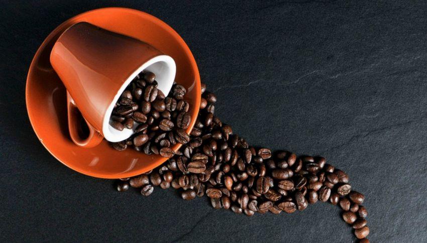 Nel 2050 potrebbe scomparire il caffè