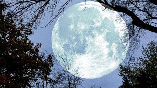 Il 14 novembre arriva la Superluna: sarà la più grande e luminosa dal 1948