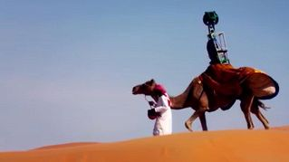 Google noleggia dromedari per portare Street View nel deserto