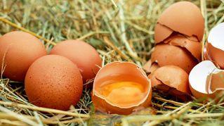 Quanto pesa un uovo in media?