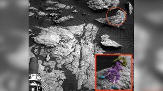 C'è una donna su Marte? La foto della NASA