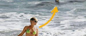 La top nuota e non si accorge dello squalo: la foto è virale