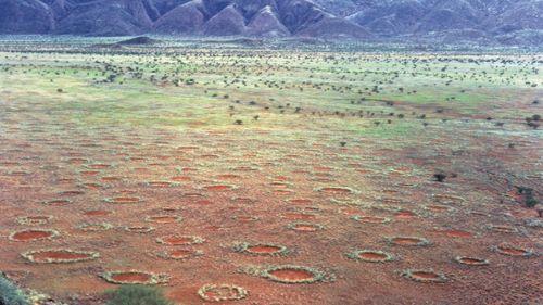 """Il mistero dei """"Cerchi delle Fate"""" in Namibia è risolto"""
