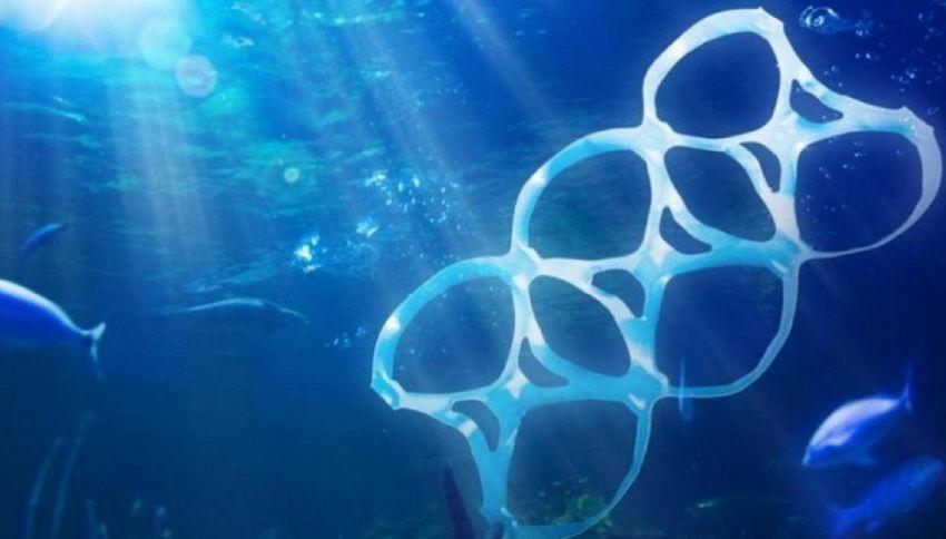"""""""Mangiando pesce ingeriamo 11mila pezzi di plastica"""": è allarme"""