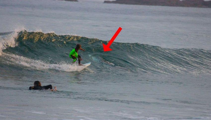 Fotografa il figlio in acqua, ma non vede lo squalo di 2 metri