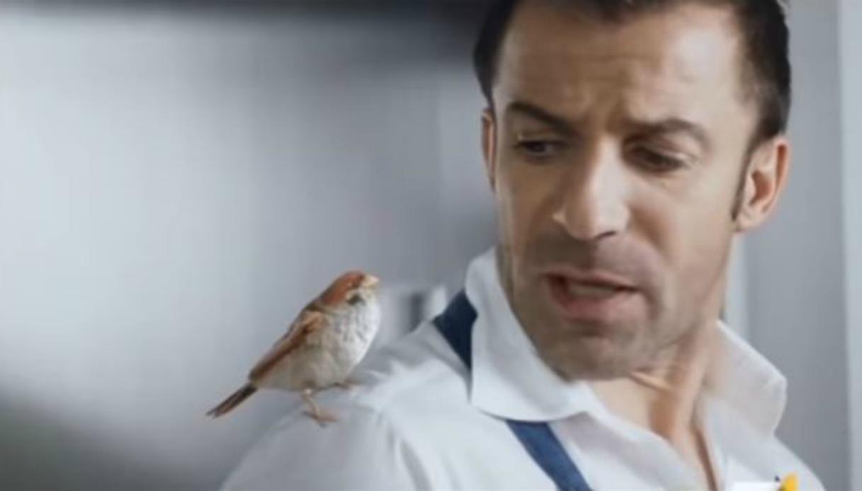 Animalisti contro Del Piero per la pubblicità con il passerotto