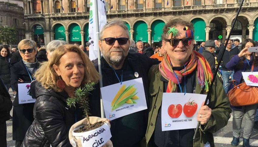 Non solo banani, in piazza Duomo arrivano zucchine e ananas