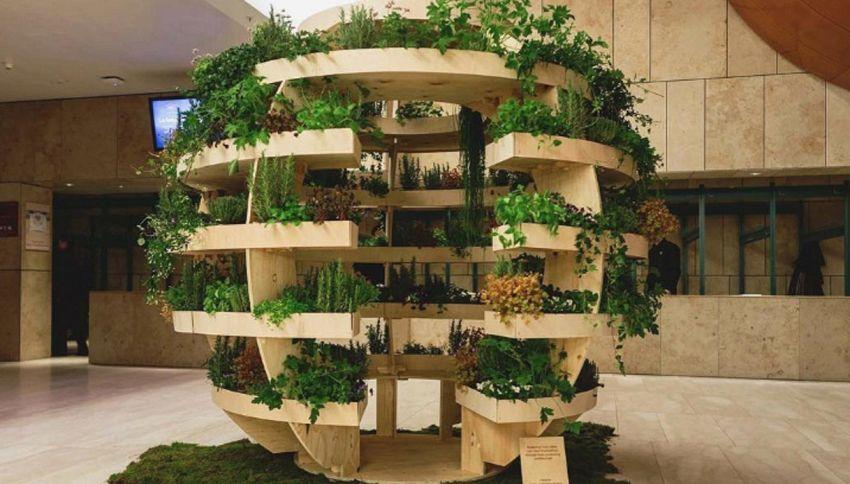 L'orto sferico per coltivare frutta e verdura anche in città