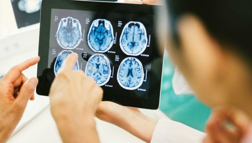Scoperto un modo per caricare la conoscenza nel cervello umano