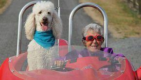 La storia di Norma: 90enne in fin di vita che gira il mondo