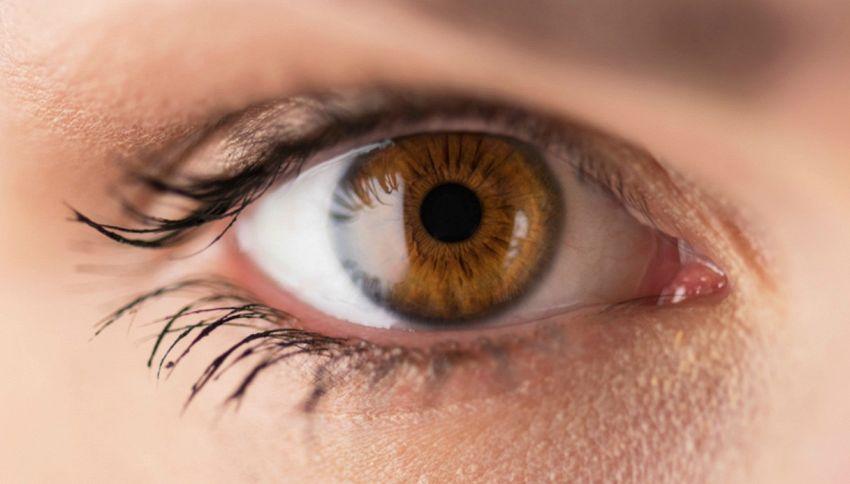 L'intelligenza si vede dalla grandezza della pupilla