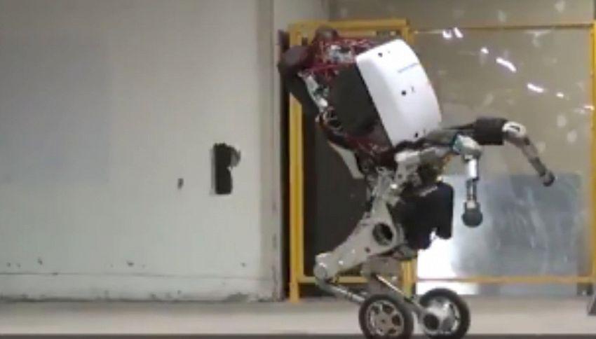 Google svela il robot 'Handle'