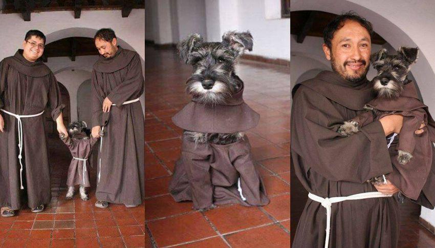 Fra' Baffo, l'irresistibile cane randagio adottato dal monastero