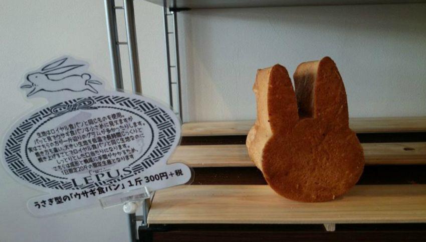Pan coniglio, il pane con le orecchie che va forte in Giappone