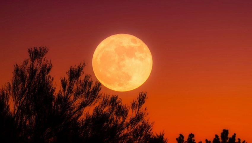 La Luna piena ha influenza su corpo e psiche dell'uomo
