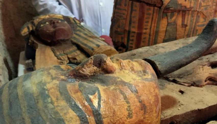 Scoperte 6 mummie a Luxor nella tomba di Userhat