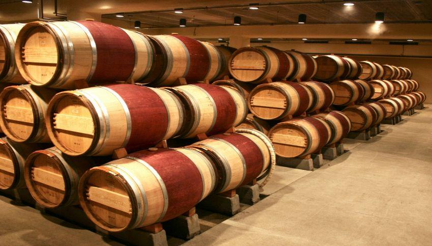 WineLeather, la nuova pelle vegetale che nasce dal vino