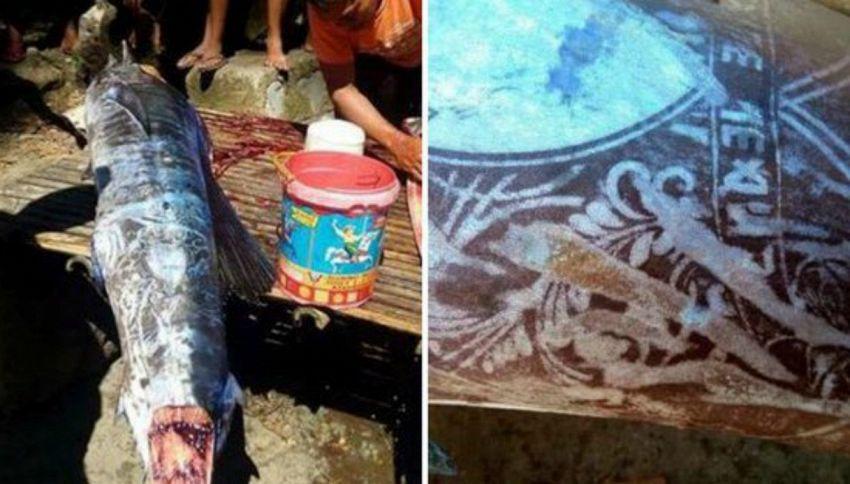Il mistero del pesce con i tatuaggi