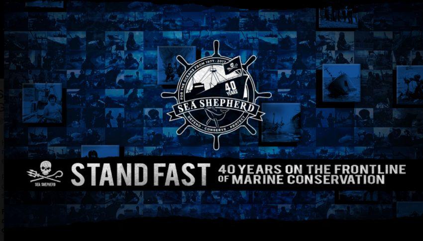 Sea Shepherd, la nave che da 40 anni difende gli oceani