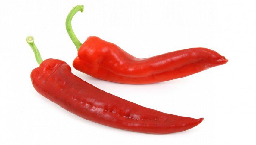 Perchè il peperoncino è così piccante?