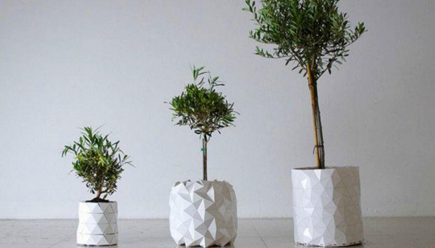 Growth: il nuovo vaso che cresce insieme alla pianta