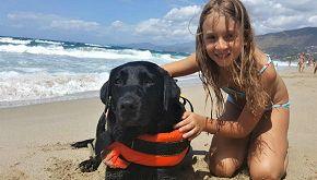 Palinuro, il cane-eroe Lux salva bimba di 8 anni in mare