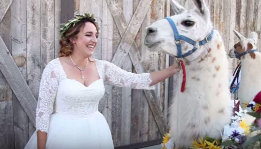 Sposa si presenta al matrimonio con due lama