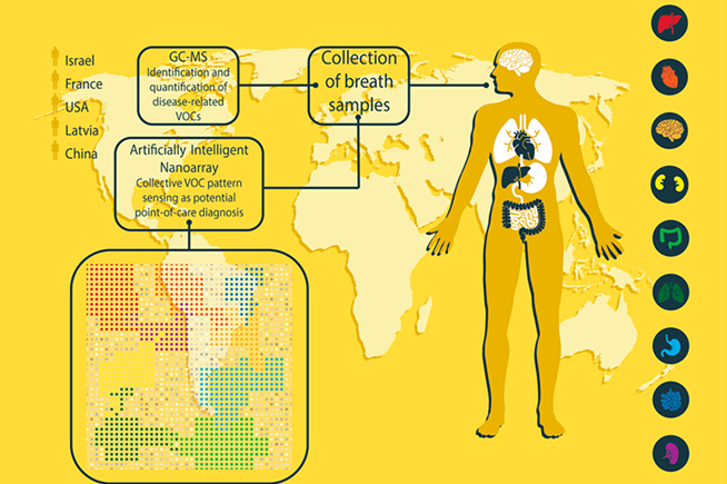 Analisi delle patologie