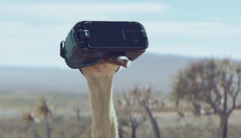 La storia dello struzzo che voleva volare, Samsung vi farà piangere