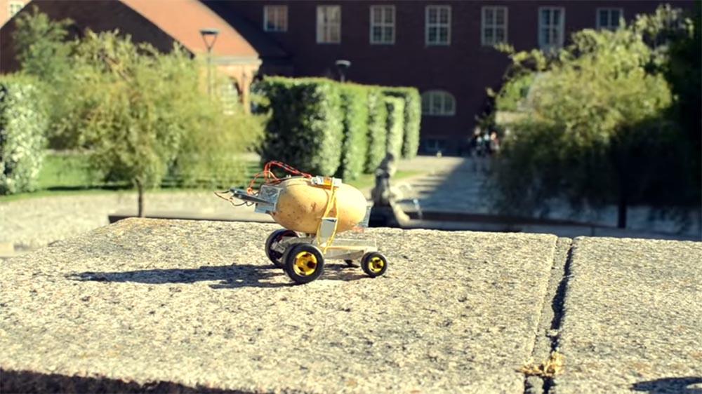 Questa patata-robot guida meglio di voi