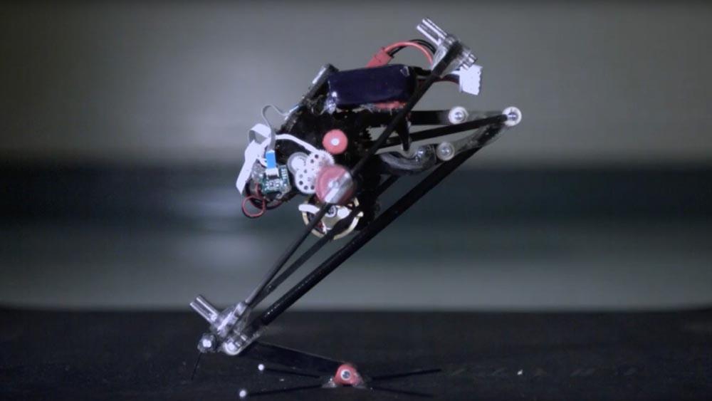 Salto, il robot acrobatico in grado di riconoscere e superare ostacoli