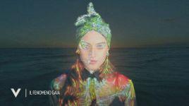 Ultimi video di Gaia Padovan