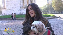 Ultimi video di Giorgia Palmas