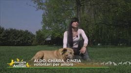 Ultimi video di Cinzia Poli