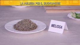 Ultimi video di Melissa Benoist