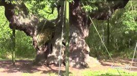 Ultimi video di Robin Wright