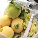 Mostarda mantovana la ricetta di buonissimo for Mostarda di mele mantovana