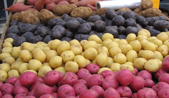 Patate, caratteristiche e ricette