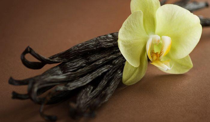 Vaniglia, caratteristiche e ricette