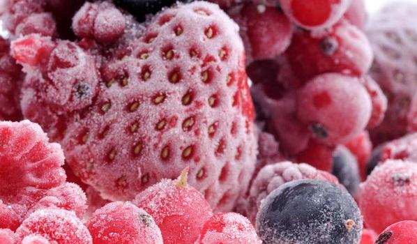 Congelare o surgelare: qual'è la differenza?