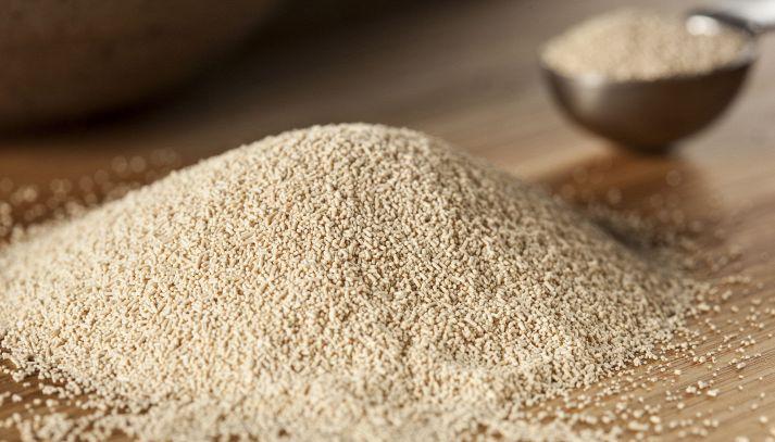 Lievito di birra, madre, cremor tartaro, bicarbonato: quale usare
