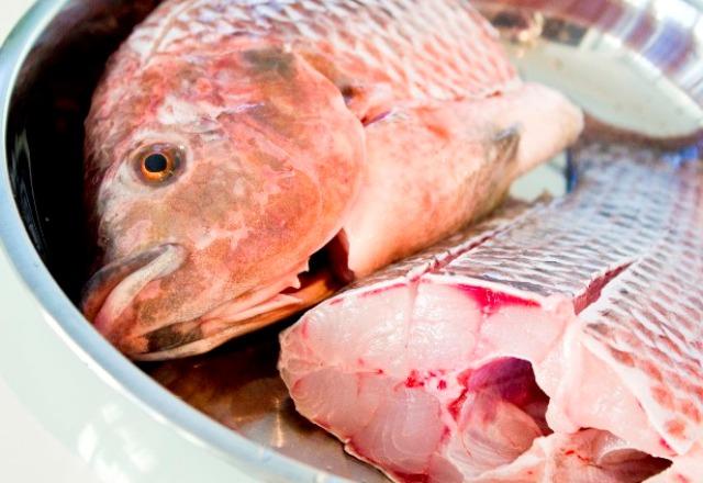 Bollire il pesce senza odori