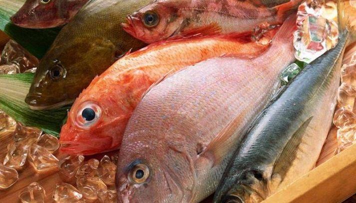 Il pesce, alleato a tavola e nella salute